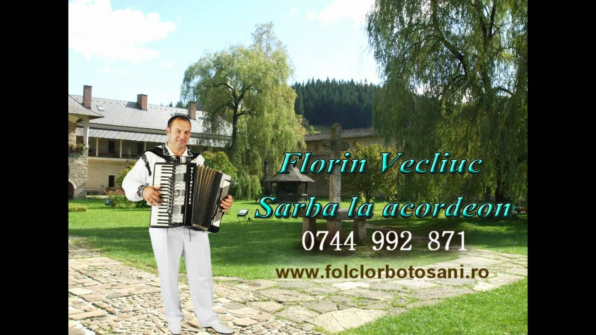 """Florin Vecliuc - Sarba la Acordeon - Formația """"Folclor Botoșani"""""""